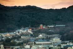 Kyoto-6480 copy