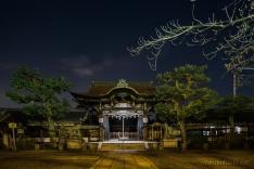 Kyoto-6704 copy