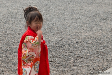 Kyoto-7812 copy