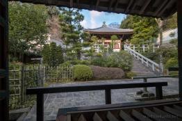 Kyoto-7895 copy