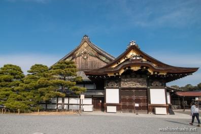 Kyoto-8707 copy