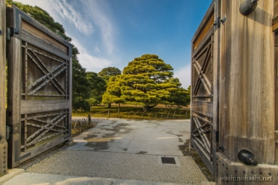 Kyoto-8711 copy