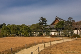 Kyoto-8737 copy