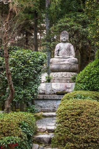 Kyoto-9069 copy