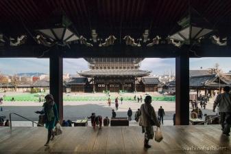 Kyoto-9271 copy