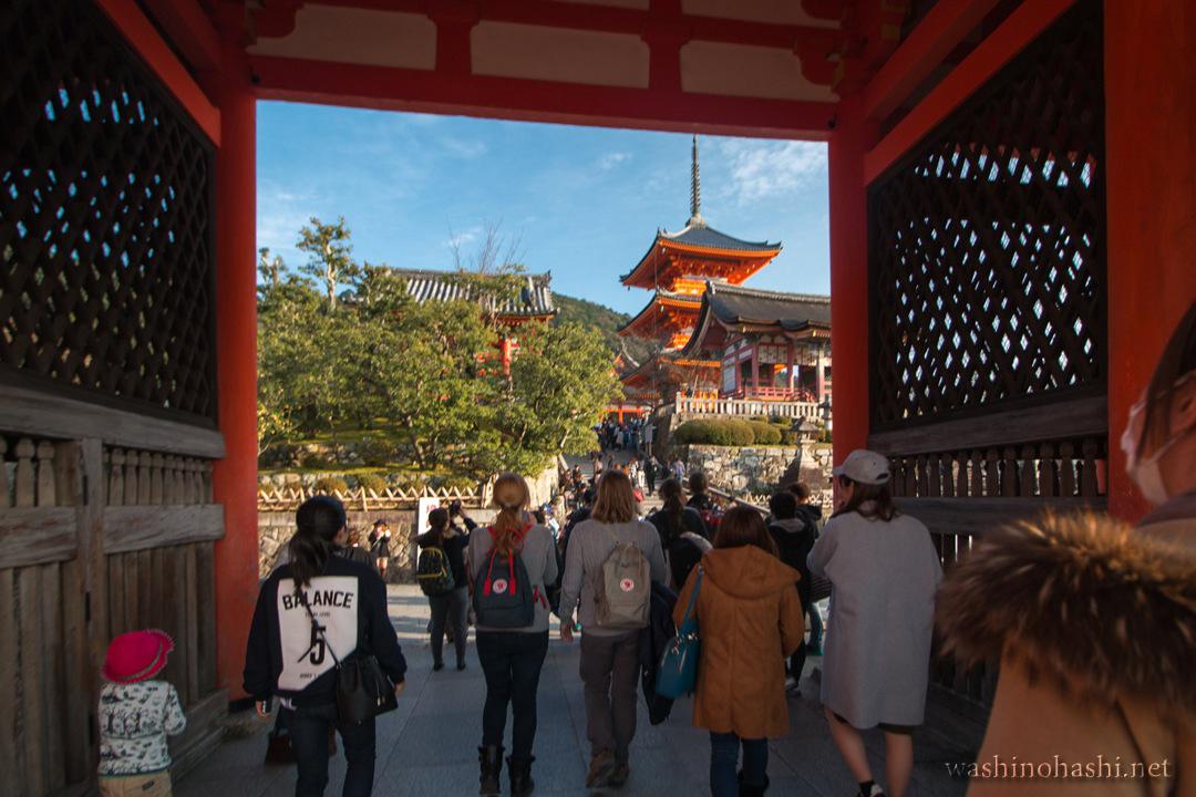 Kyoto-9374 copy